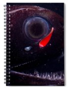Dragonfish Spiral Notebook