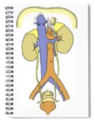Illustration Of Female Urinary System Spiral Notebook