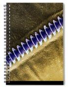 Cricket Sound Comb, Sem Spiral Notebook