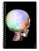 Human Skull Spiral Notebook