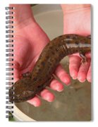 Mudpuppy Spiral Notebook