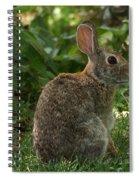 Rabbit Spiral Notebook
