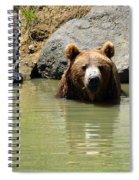 A Bear's Hot Tub Spiral Notebook