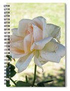 A Beautiful White And Light Pink Rose Along With A Bud Spiral Notebook