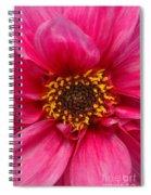 A Big Pink Flower Spiral Notebook