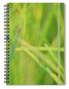 A Blue And Grass Spiral Notebook