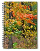 A Blustery Autumn Day Spiral Notebook