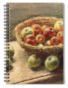 A Bowl Of Apples Spiral Notebook