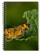 A Brief Moment Of Rest Spiral Notebook