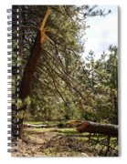 A Broken Tree Spiral Notebook