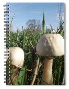 A Bugs View Spiral Notebook