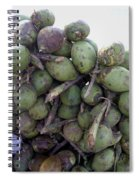A Bunch Of Tender Coconuts Being Sold By A Vendor On The Street Spiral Notebook