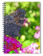 A Butterfly On The Pink Flower Spiral Notebook