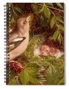A Chaffinch At Its Nest Spiral Notebook
