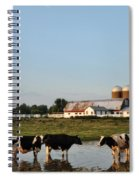 A Cow's Day At The Beach Spiral Notebook