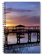 A December Sky Spiral Notebook