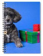 A Dog With Some Gifts Spiral Notebook