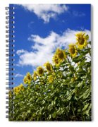 A Field Of Sunflowers . Auvergne. France Spiral Notebook