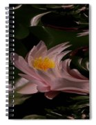 A Fractual Lily Spiral Notebook