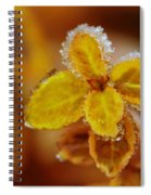 A Frosted Plant Spiral Notebook