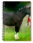 A Girl And Her Horse Spiral Notebook