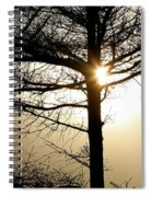 A Golden Day Spiral Notebook