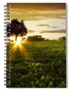 A Golden Evening  Spiral Notebook