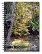 A Golden Hill Of Sunlight Spiral Notebook