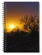 A Golden Saguaro Sunrise Spiral Notebook