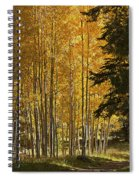 A Golden Trail Spiral Notebook