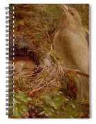 A Greenfinch At Its Nest Spiral Notebook