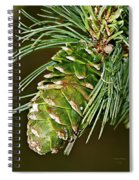 A Growing Pine Cone Spiral Notebook