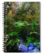 A Hint Of Fall At Ichnetucknee Springs Spiral Notebook