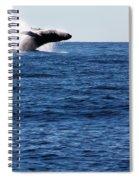 A Huge Splash Spiral Notebook