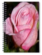 A Kiss By A Rose Spiral Notebook