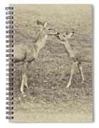 A Kiss For Mom Sepia Spiral Notebook