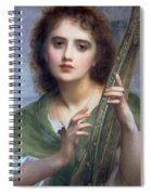 A Lady With Lyre Spiral Notebook