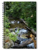 A Lazy Summer Day On Mt Spokane Spiral Notebook