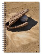 A League Of The Own Spiral Notebook