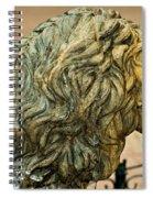 A Lion In Summer Spiral Notebook
