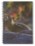 A Little Chipmunk  Spiral Notebook