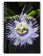 A Little Passion  Spiral Notebook