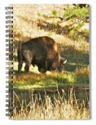 A Lone Bison In Yellowstone 9467 Spiral Notebook