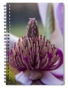 A Look Inside Spiral Notebook