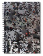 A Mob Of Red-winged Blackbirds Spiral Notebook