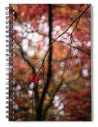 A Pair Spiral Notebook