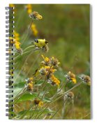 A Pair Of Goldfinches In Spokane Spiral Notebook