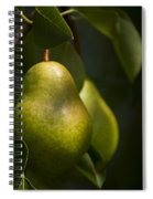 A Pair Of Pear On A Tree Spiral Notebook