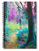 A Path Along A River Spiral Notebook