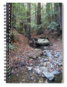A Peaceful Redwood Creek On Mt Tamalpais Spiral Notebook
